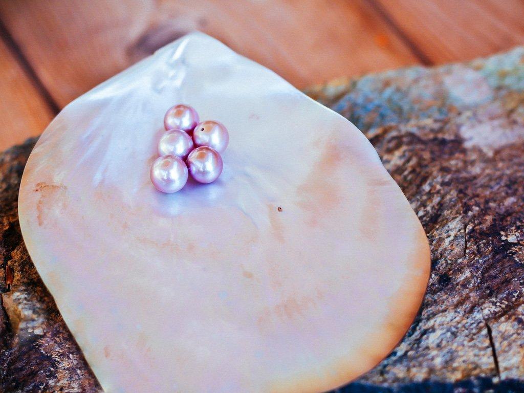 perla růžová 7.5 - 8 mm