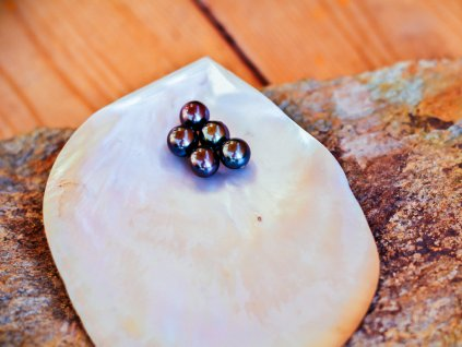 perla černá 7.5 - 8 mm