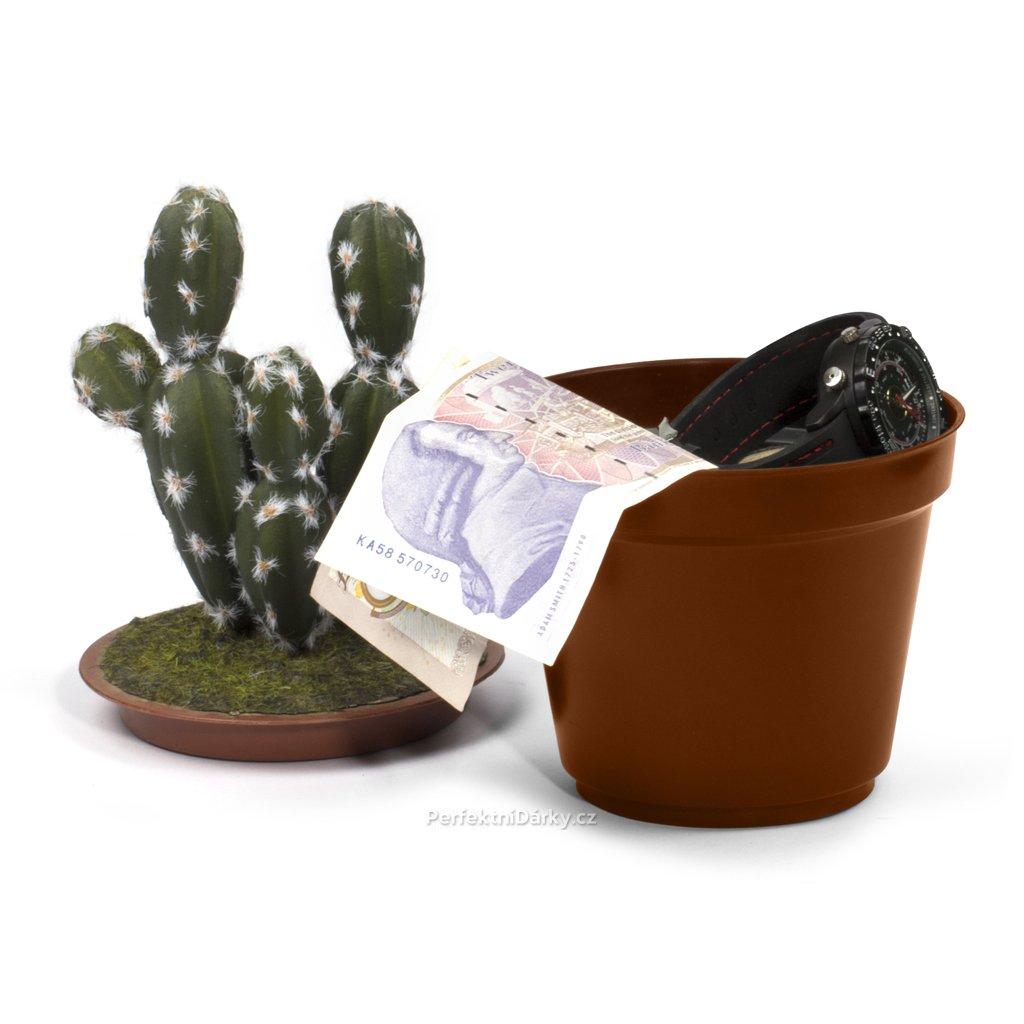 Skrýš v kaktusu
