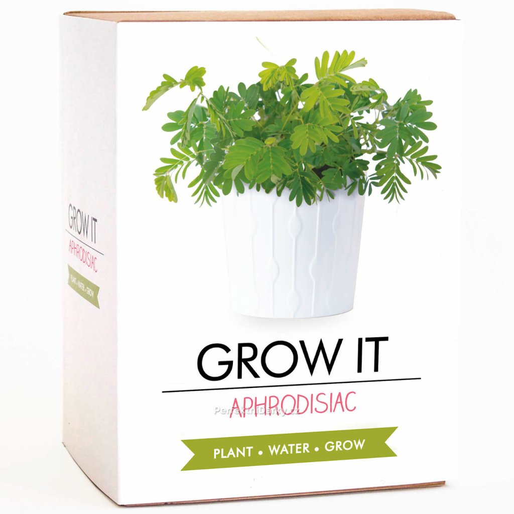 Afrodiziakální rostlina