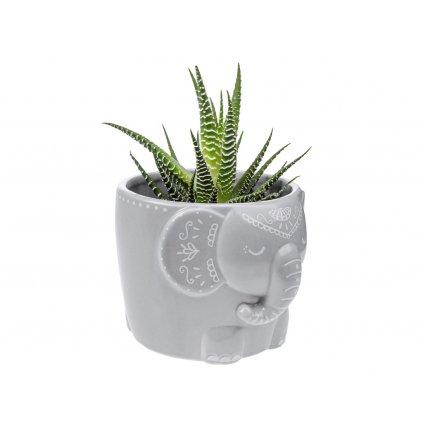 Porcelánový květináč - slon