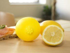 Pomocník na citróny