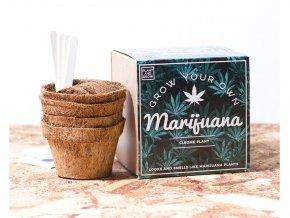 """Vypěstuj si """"Marihuanu"""""""