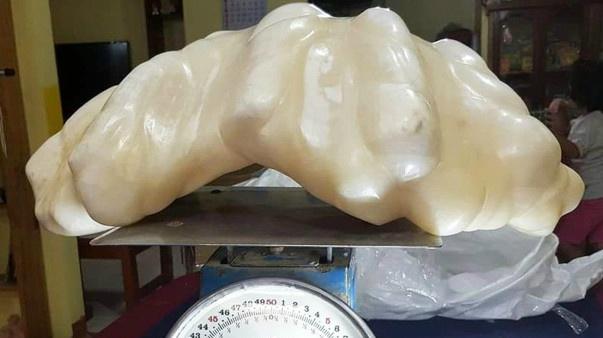 Největší perla na světě