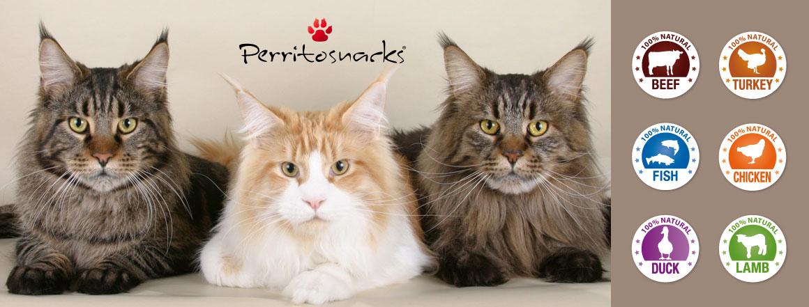 perrito pamlsky pro kočky