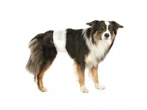 Papírové pleny pro psy  (12 ks/bal.)