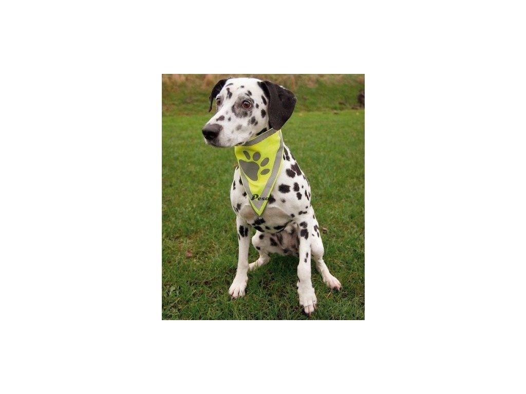 Reflexní šátek pro psa S-M 29 cm TRIXIE