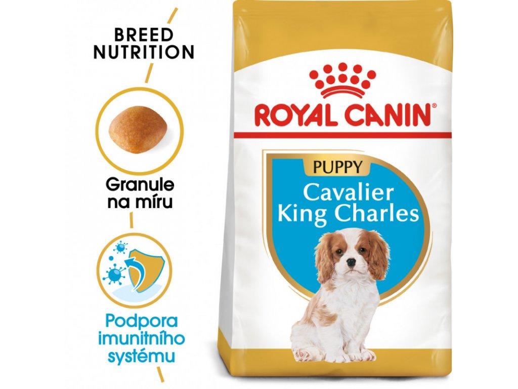 Cavalier King Charles Puppy granule pro štěně kavalír king charles španěl 1500g