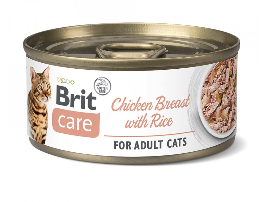 BCC cans chicken breast with rice 3D