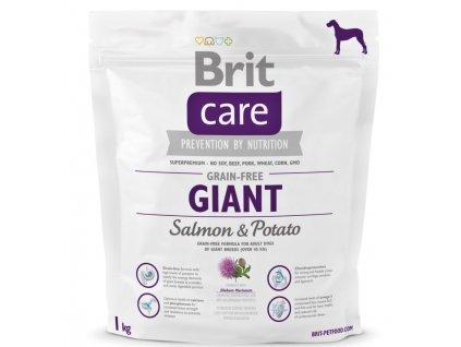 3591 brit care grain free giant salmon potato 1kg