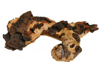 Mopani, africký kořen L