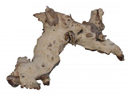 Lucky Reptile Mopani 40-50 cm