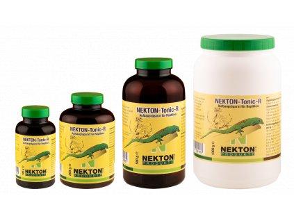 NEKTON TONIC – R pro denní gekony 100g