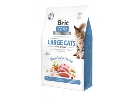 large cats 400g