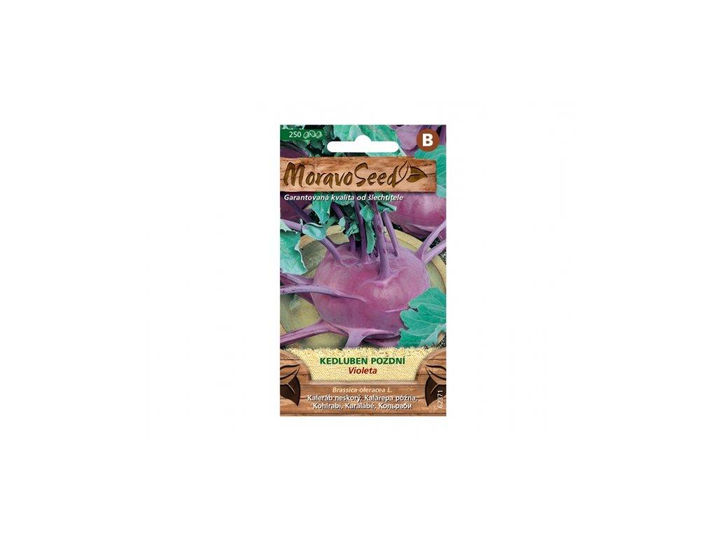 kedluben violeta