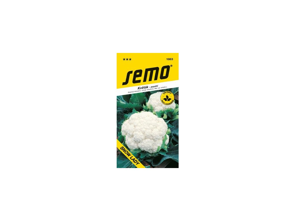SEMO Květák - pozdní SNOW LADY