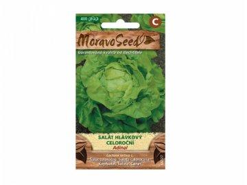 salat adinal