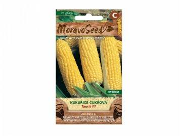 kukuřice tauris
