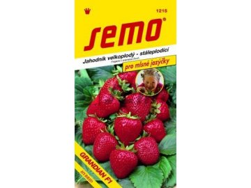 SEMO Jahodník velkoplodý - stáleplodící GRANDIAN F1 pro mlsné jazýčky