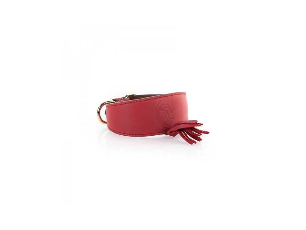 Luxusní obojek pro chrty červený TRUSSARDI Nappina