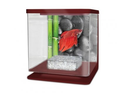 CATGATO Betarium Betta kit stones 2l