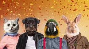 Medzinárodný deň zvierat sa blíži! Pripravení na oslavu?