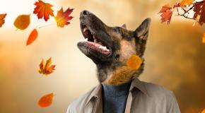 Podzim v barvách slev!
