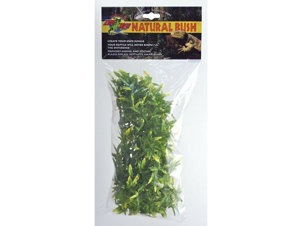 12282 terarijni rostlina zmd bolivian croton m
