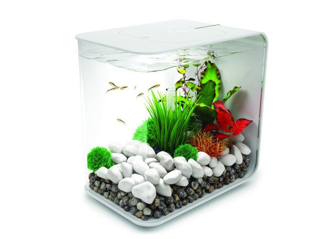 2307 biorb flow led akvarijni set bily 15l