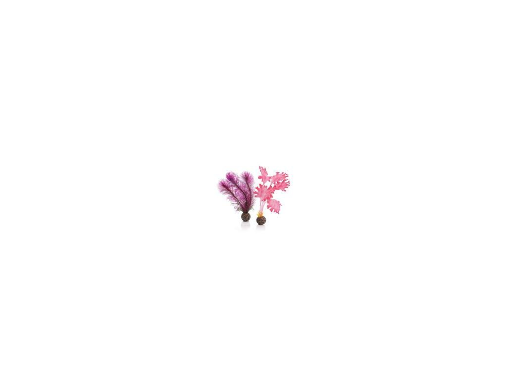 7554 biorb akvarijni dekorace chaluha ruzova mala 2 ks