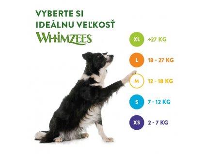 WHIMZEES Dental Aligator L  30g 6ks