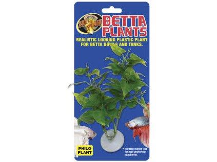 13377 betta plant filodendron