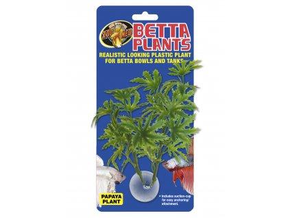 13380 betta plant papaja