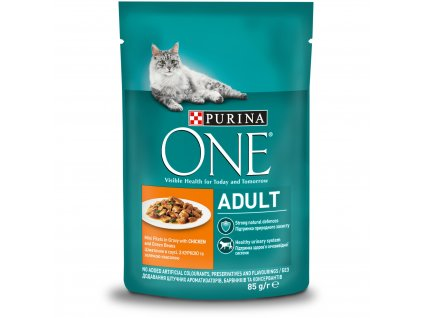 Purina ONE ADULT mini filetky s kuratom a zel.fazolkami ve stave 85g