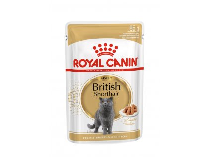 5046 royal canin british shorthair gravy ve stave 12x85g