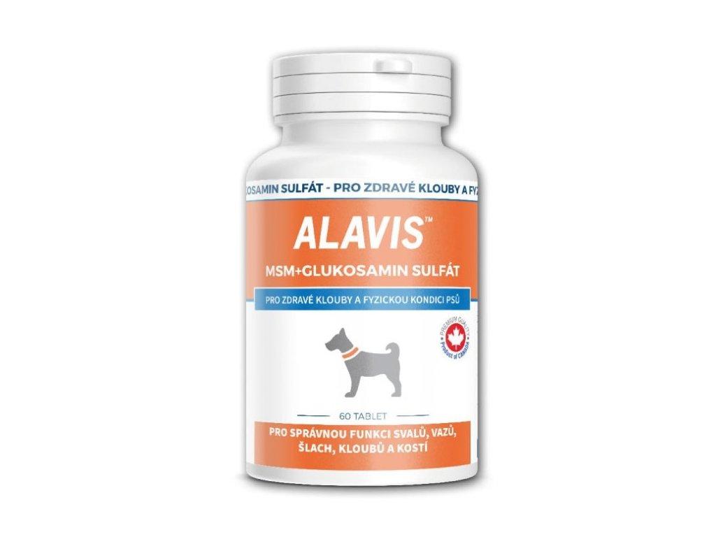 ALAVIS MSM + Glukosamin sulfát 60 tablet