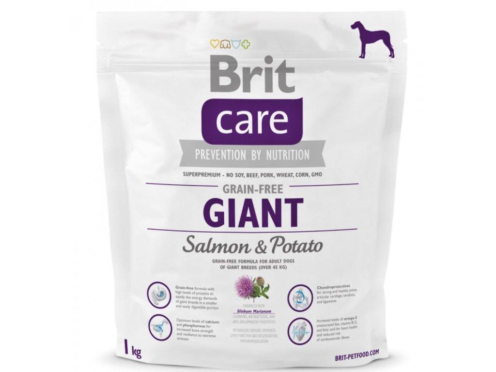 Brit Care Grain-free Giant Salmon & Potato 1 kg