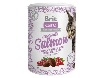 4620 brit care cat snack superfruits salmon 100g