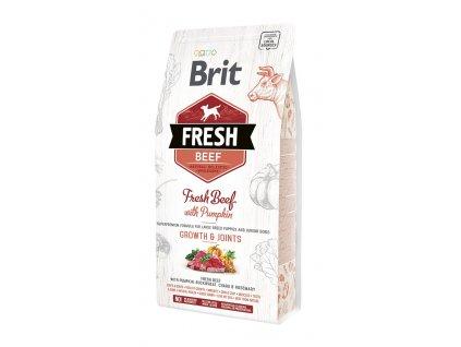 Brit Fresh Beef & Pumpkin Puppy Large 2,5 kg