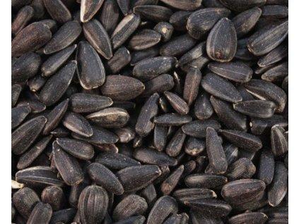 slunecnice semena 2