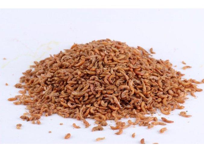 Sušený hmyz - Gammarus