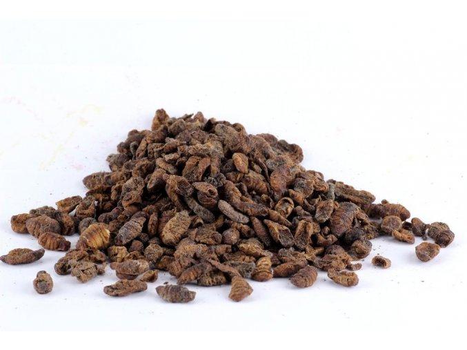 Sušený hmyz - Kukly Húsenice priadky morušovej