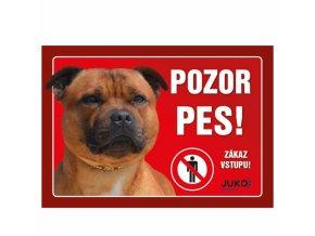Ceduľka PLAST - Staffordshire Bull Terrier