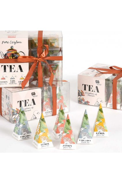 996102 Tea Pyramid Box 2