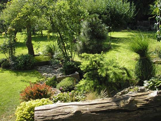 Trávník a zahrada
