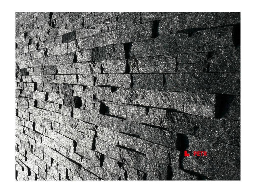 PA038(1) (900 x 675)
