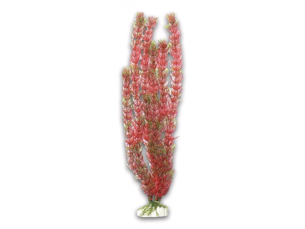 Akvarijní UH rostlina M016, výška 40 cm