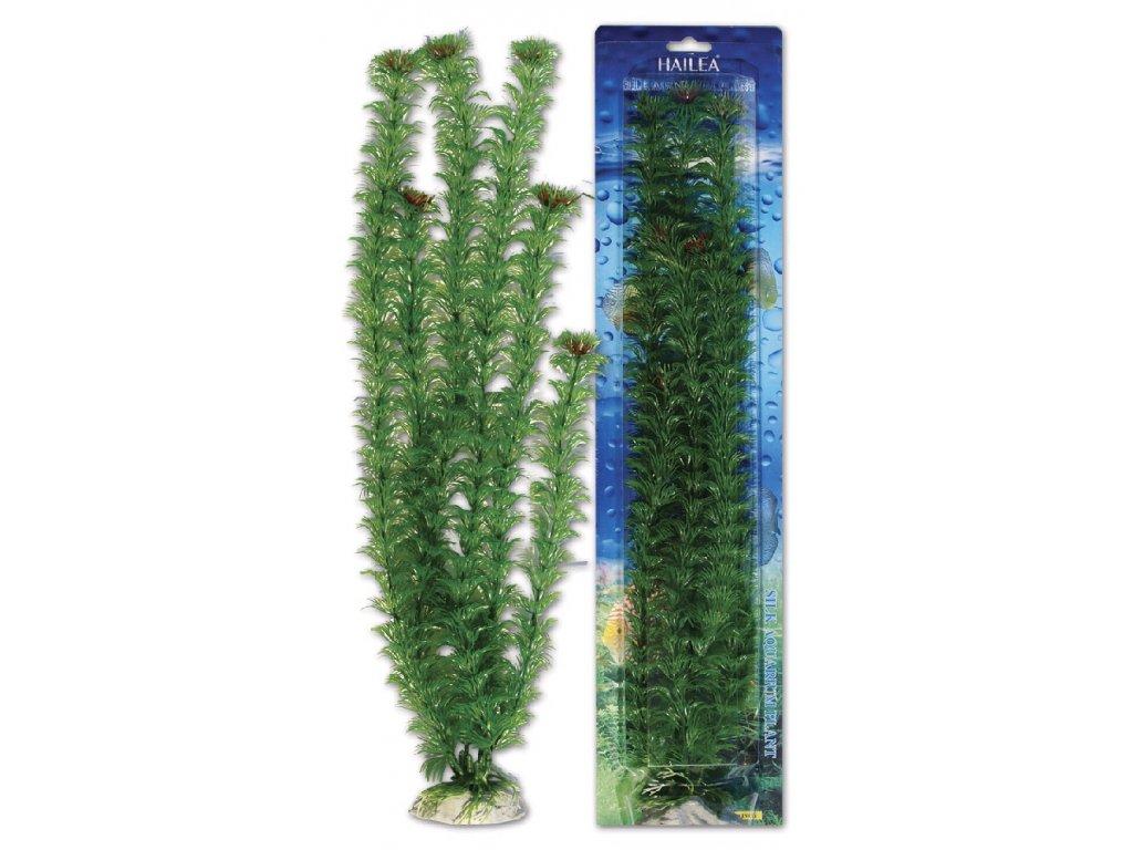 Akvarijní UH rostlina M036, výška 50 cm