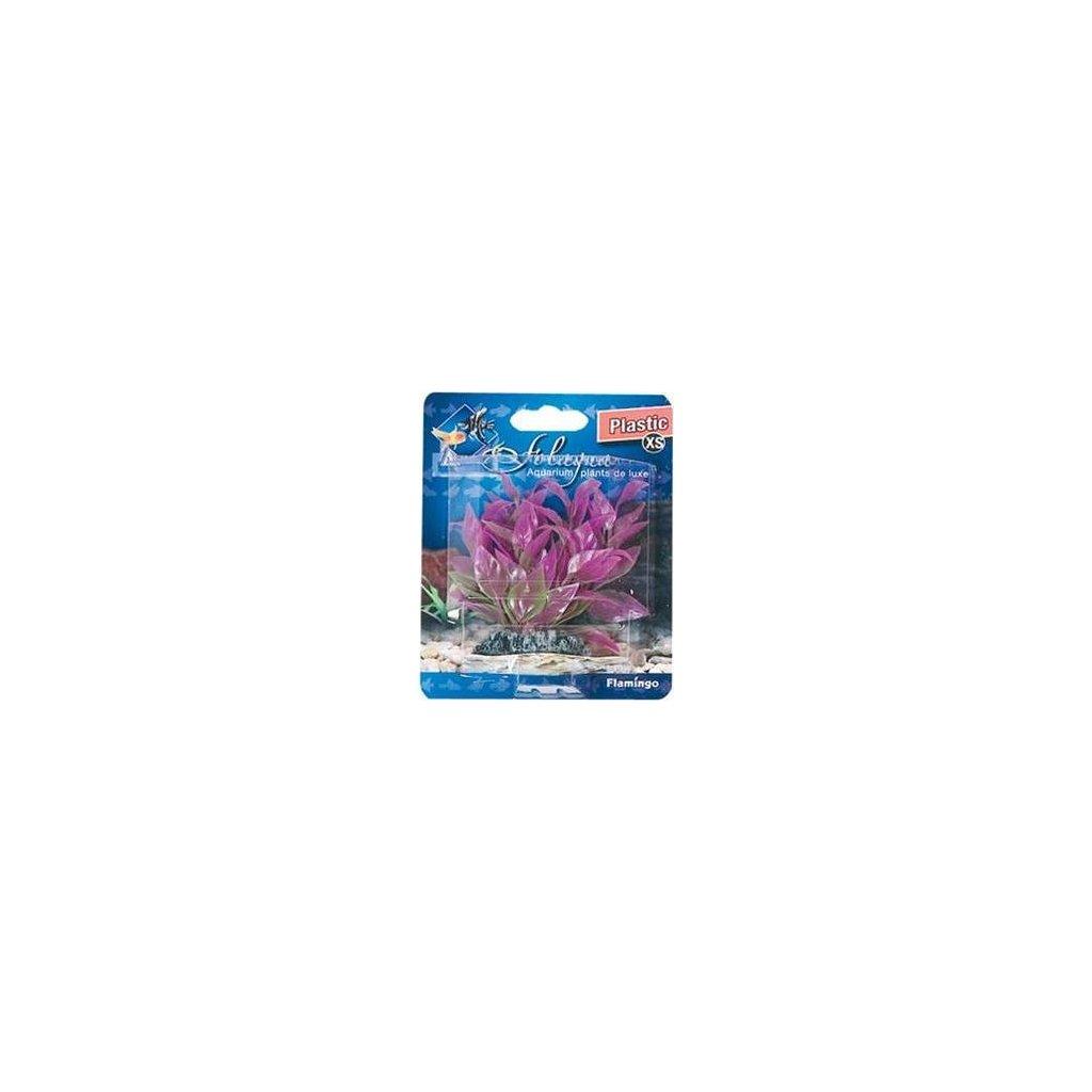 Rostlina plast Cuba Flamingo 9 cm