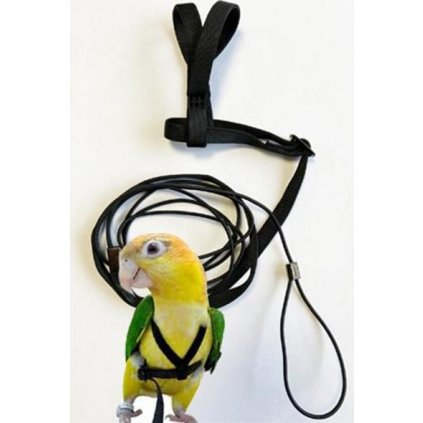 Kšandy s vodítkem pro papoušky L